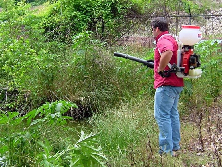 Mosquito control worker applying granular larvicide